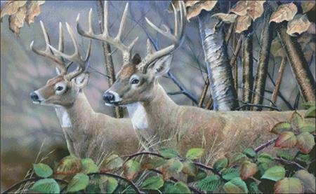 click here to view larger image of Blackberry Vines White Tail Deer (chart)