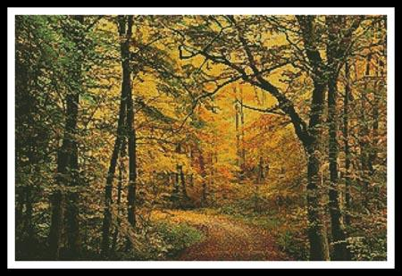 click here to view larger image of Autumn Forest  (Jochen Schlenker) (chart)