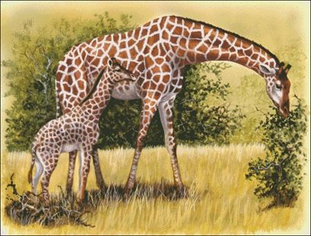 click here to view larger image of Giraffe On The Plains (chart)