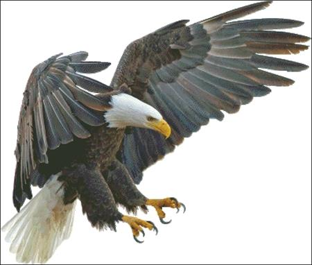 click here to view larger image of Eagle In Flight (chart)