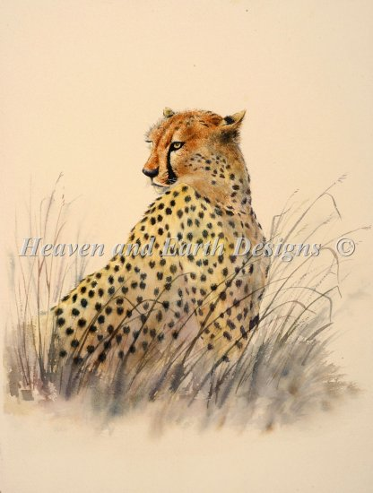 click here to view larger image of Cheetah (chart)