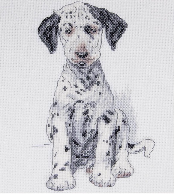 click here to view larger image of Pongo (counted cross stitch kit)