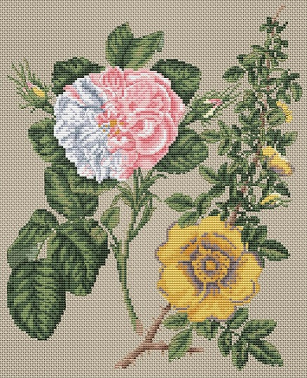 click here to view larger image of Damask Rose & Yellow Rose (counted cross stitch kit)