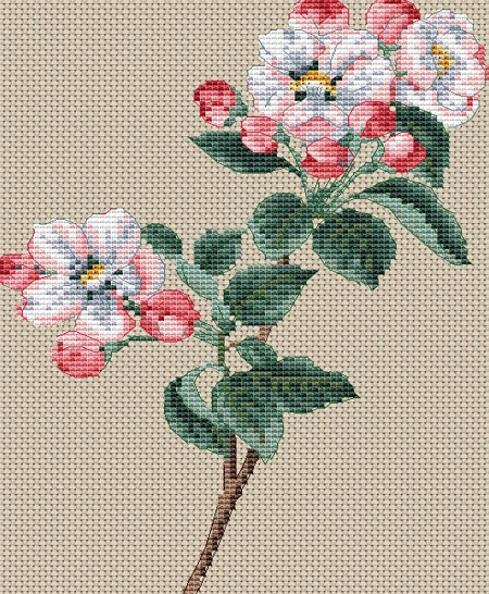 click here to view larger image of Pyrus Malus (Apple Blossom) (counted cross stitch kit)