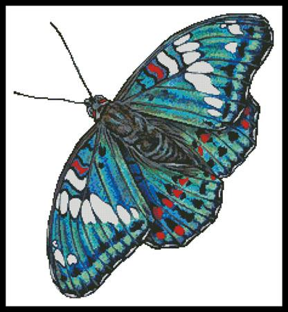 click here to view larger image of Gaudy Baron Butterfly (No Background) (chart)