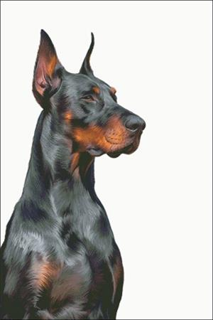 click here to view larger image of Doberman (chart)
