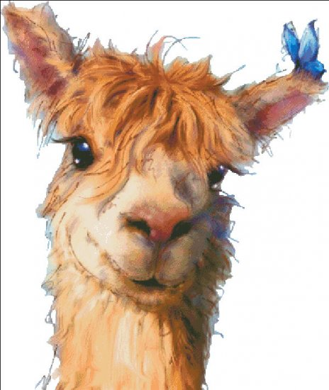 click here to view larger image of Alpaca - No Background (chart)