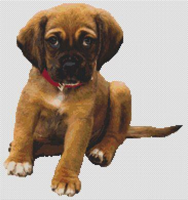 click here to view larger image of Boxer Puppy (chart)