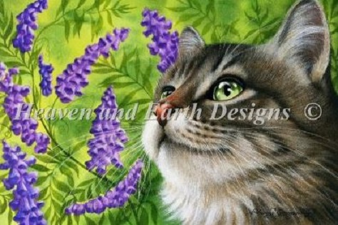 click here to view larger image of Purple Vetch RS (chart)