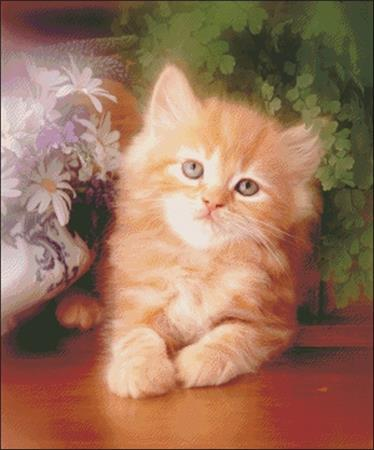 click here to view larger image of Kitten and Daisies (chart)
