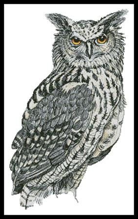 click here to view larger image of Eurasian Eagle Owl (chart)