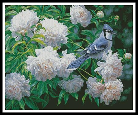 click here to view larger image of Blue Jay in Peonies (chart)