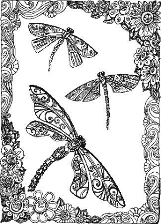 click here to view larger image of Dragonflies (chart)