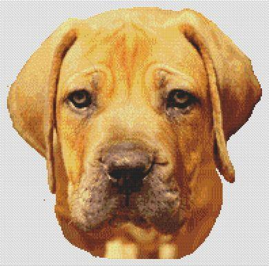 click here to view larger image of Boerboel (chart)