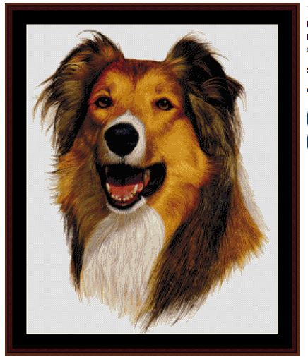 click here to view larger image of Rough Collie (new edition) (chart)
