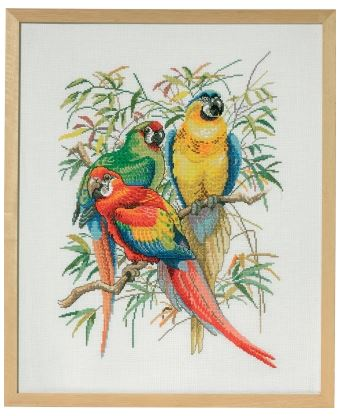 click here to view larger image of Parrot Trio (counted cross stitch kit)