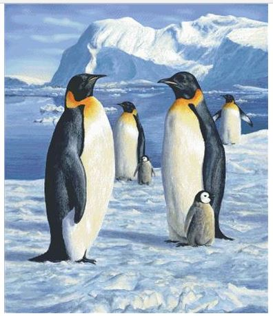 click here to view larger image of Penguins (chart)