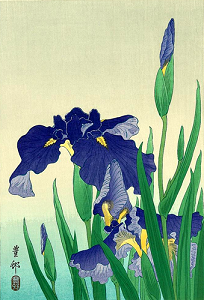 click here to view larger image of Flowering Iris II (chart)