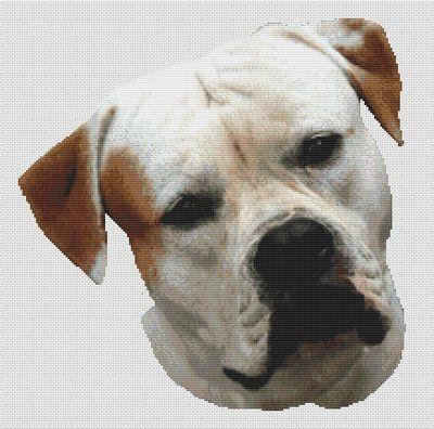 click here to view larger image of American Bulldog (chart)