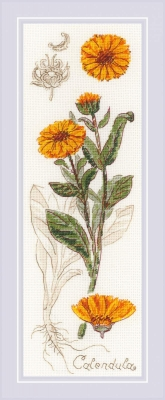click here to view larger image of Calendula (counted cross stitch kit)