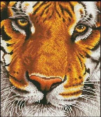 click here to view larger image of Bengal Magic (Diamond Embroidery)