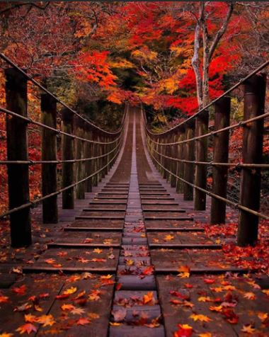click here to view larger image of Bridge in Autumn (chart)