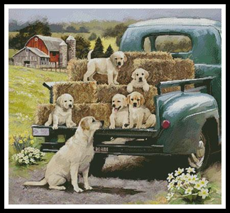 click here to view larger image of Green Truck Pups (chart)