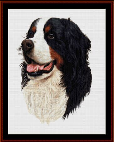 click here to view larger image of Bernese Mt. Dog  (chart)