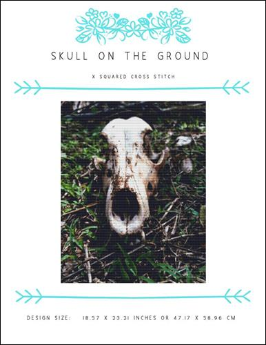 click here to view larger image of Skull on the Ground (chart)