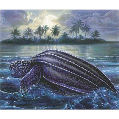 click here to view larger image of Moonlit Turtle (chart)