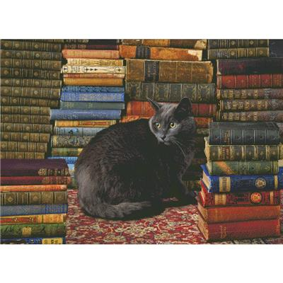 click here to view larger image of Library Cat (chart)