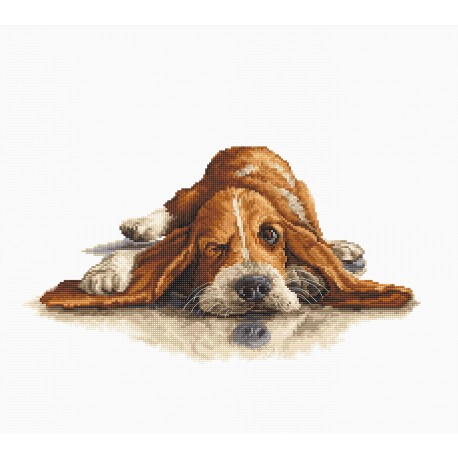 click here to view larger image of Basset (counted cross stitch kit)