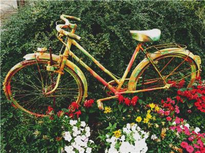 click here to view larger image of Floral Bicycle (chart)