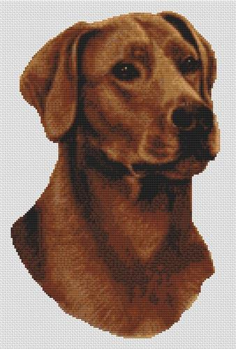 click here to view larger image of Fox Red Labrador (chart)