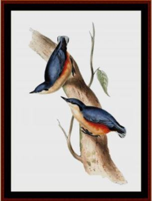 click here to view larger image of Common Nuthatch (chart)