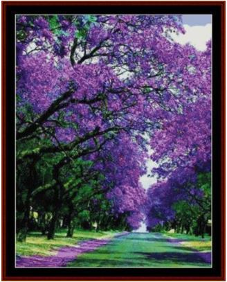 click here to view larger image of Jacaranda Street (chart)