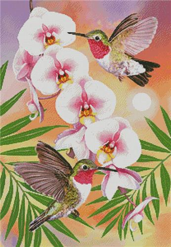 click here to view larger image of Annas Hummingbirds with Phalaenopsis (chart)