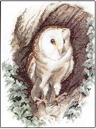 click here to view larger image of Barn Owl (chart)