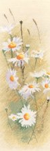 click here to view larger image of Daisies Panel  (counted cross stitch kit)