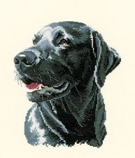 click here to view larger image of Chester (counted cross stitch kit)