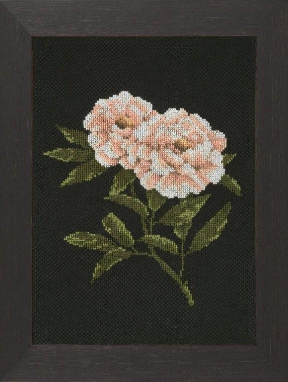 click here to view larger image of Peonies on Black (counted cross stitch kit)