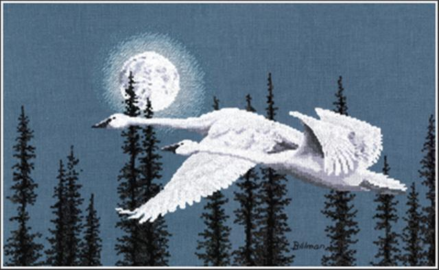 click here to view larger image of Night Moves (Trumpeter Swan) (chart)