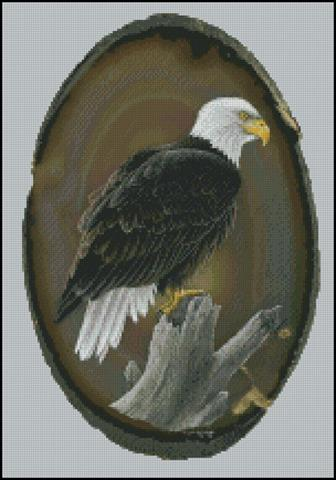click here to view larger image of American Bald Eagle (chart)