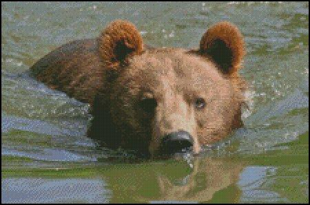 click here to view larger image of Brown Bear Swimming (chart)