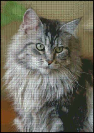 click here to view larger image of Silver Tabby Cat Portrait (chart)