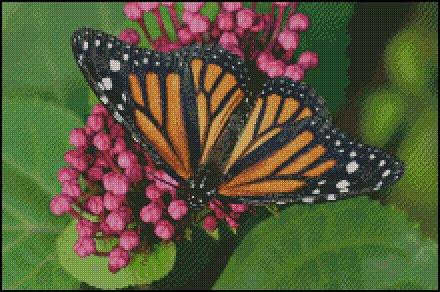 click here to view larger image of Monarch Butterfly  (chart)