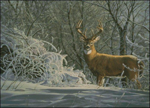 click here to view larger image of Winter Whitetail  (chart)