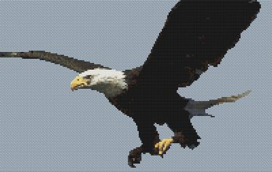 click here to view larger image of Bald Eagle 2 (chart)