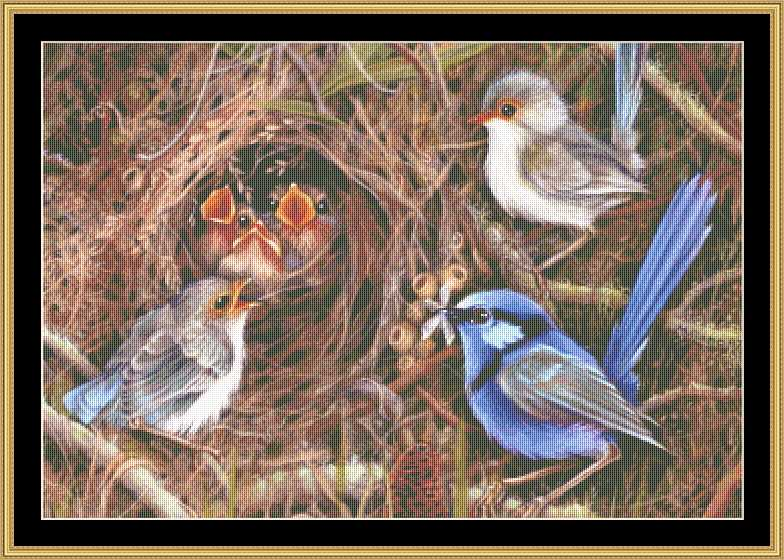 click here to view larger image of Blue Wren Family (chart)