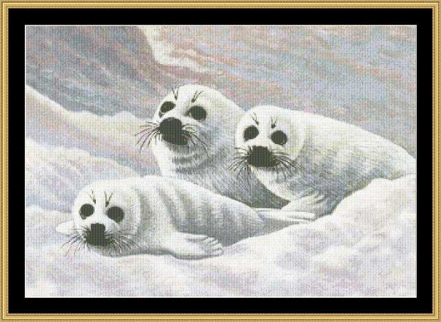 click here to view larger image of Harps Seal Pups  (chart)